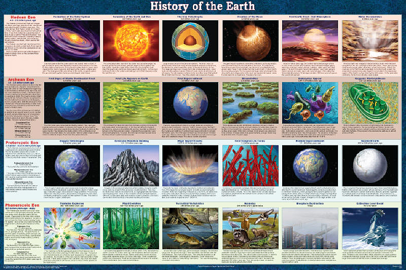 history of life on earth History of life on earth  the history of life as found in traces or remains of living things adapted from holt biology 2008  relative dating a method for.